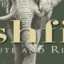 Bushfind, Safaris