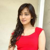 Arpita Sharma