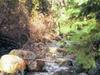 Little Applegate River