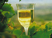 2-Day Margaret River Wine Experience Tour from Perth Photos