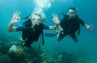2-Tank Dive Trip from Nassau Photos