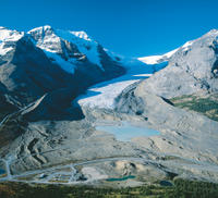 Athabasca Glacier Snow Trip from Banff Photos