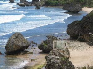 Barbados Shore Excursion: Coastal Sightseeing Tour Photos