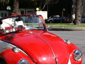 Self-Guided Tour of San Francisco in a Classic VW Bug Photos