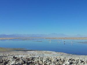 4-Day Atacama Desert Tour: Moon Valley, Geysers del Tatio and the Chilean Salt Flats Photos