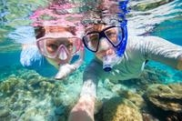 Fantasia Snorkel Sea Safari Photos
