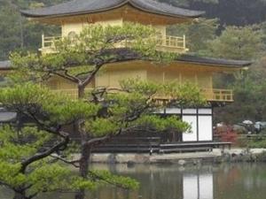 Kyoto Day Tour of Golden Pavilion, Nijo Castle and Sanjusangendo from Osaka Photos
