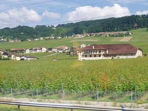 Day Trip to Gruyères including Golden Panoramic Express Train Photos