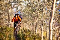 Guided Mountain Biking Adventure from Whitehorse Photos
