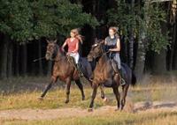 Horseback Riding to La Fortuna Waterfall Photos