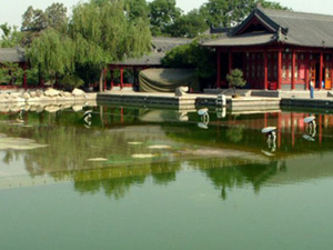 Small-Group Tour to the Terracotta Warriors and Hot Springs Spa from Xi'an Photos