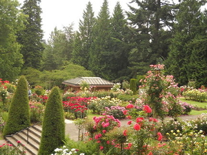 Best of Portland Small-Group Sightseeing Tour Photos