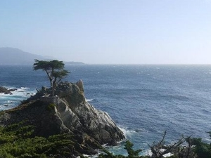 Monterey, Carmel and 17-Mile Drive Day Trip from San Francisco Photos