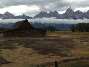 Grand Teton Small-Group Wildlife Safari by Jeep Photos