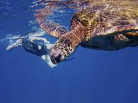 Na Pali Coast Kauai Snorkel and Sail Photos