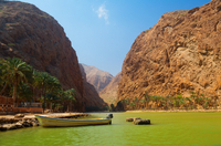 Private 4x4 Safari of Wadi Shab - The Coastal Caravan Photos