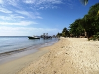 Roatan Shore Excursion: Small-Group Snorkeling Tour and Private Beach Access Photos