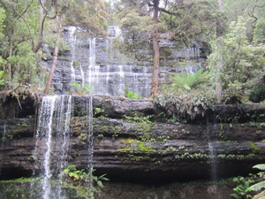Mt Field National Park and Russell Falls from Hobart Photos