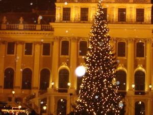 Schonbrunn Palace Evening Concert Photos